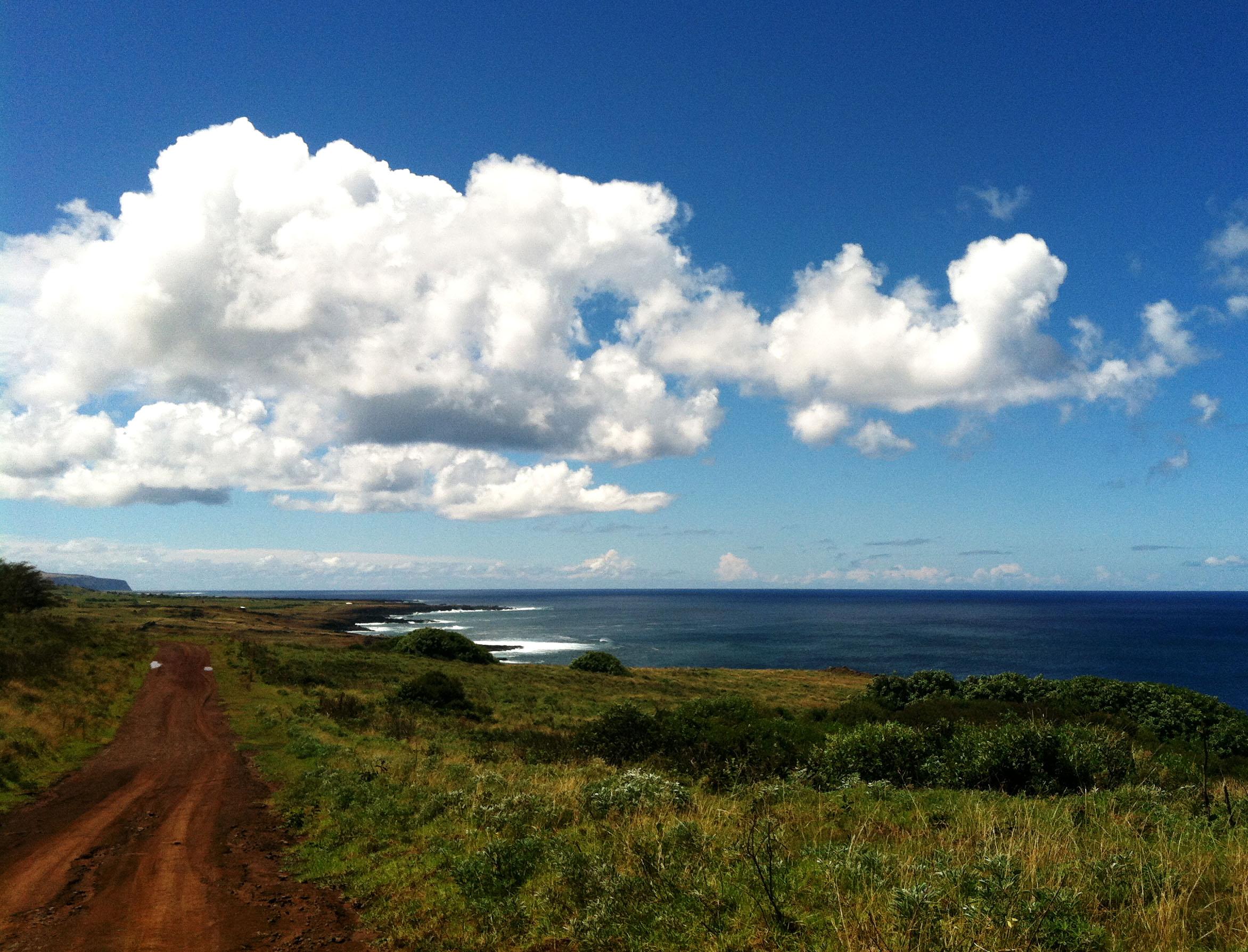 Rapa Nui Road